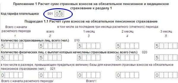 Изображение - Пониженный тариф фсс для основного вида деятельности kod-tarifa-platelshchika-strahovyh-vznosov-2017-4
