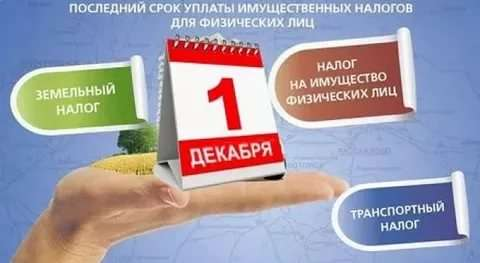 1 декабря истекает срок уплаты имущественных налогов