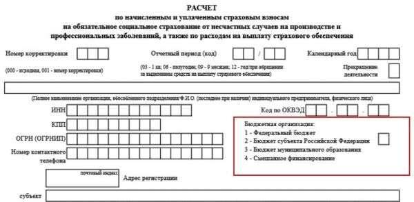 Электронная отчетность в фсс с 2019 года полный пакет регистрации ооо